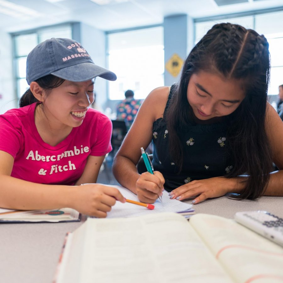 READY, SET, GO!: Seniors Jessica Lin and Miya Grant review the most recent Statistics chapter content and homework before class together.