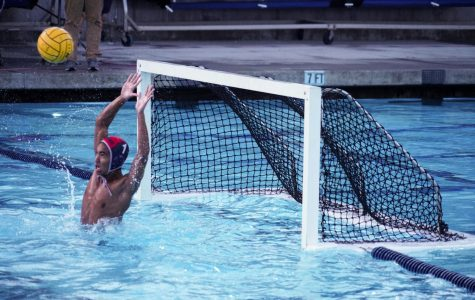 Boys Water Polo's splash-tacular season
