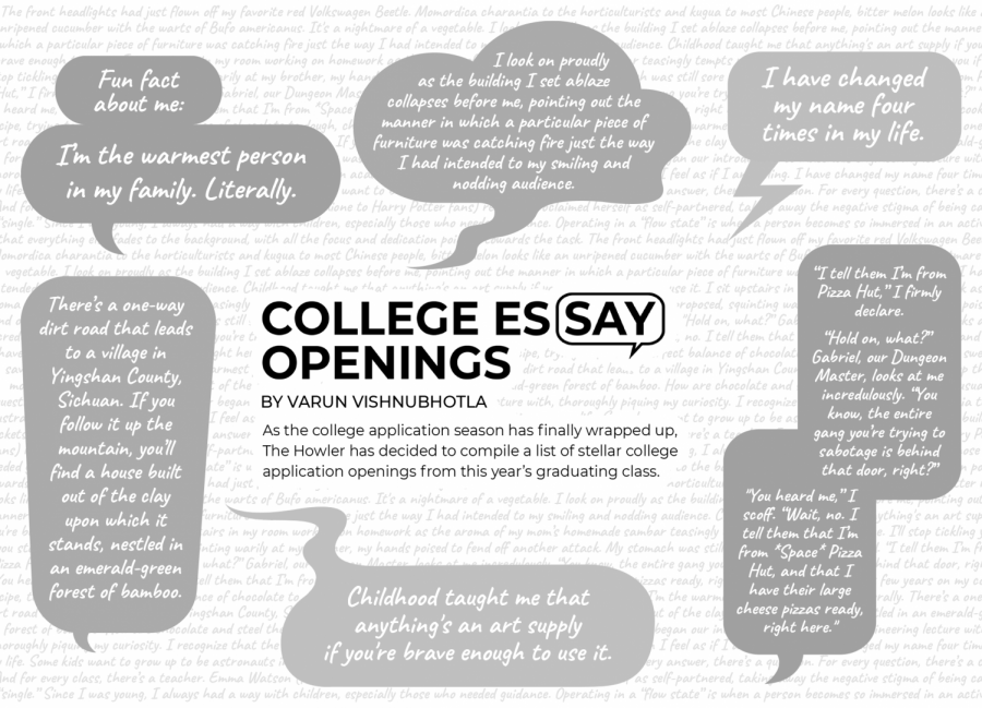 College Essay Openings BW