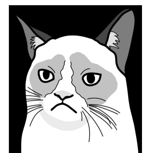 Salty Cat