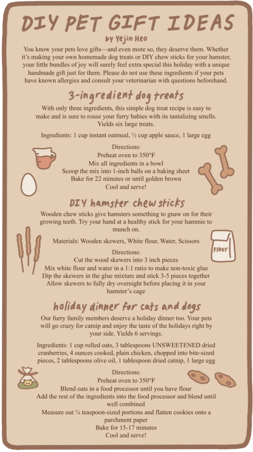 DIY Pet Gift Ideas