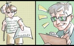Bill Gates Adoption Cartoon