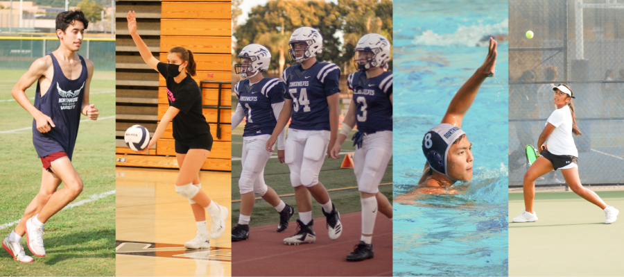 ATHLETES+IN+ACTION%3A+%28left+to+right%29+Captains+senior+Jason+Berry%2C+senior+Hannah+Compton%2C+junior+Andrew+Penrod%2C+senior+Ace+Jacobs%2C+junior+Adam+Harper%2C+senior+Danny+Kim+and+junior+Yuvika+Satapathy+demonstrate+their+skills+as+they+practice+and+compete+in+their+respective+sports.+